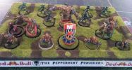 BloodBowl_WC2015-041.jpg